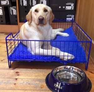 Orroland Dog Bed